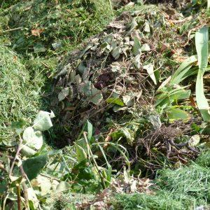 Gartenabfälle unter 15cm. Durchmesser